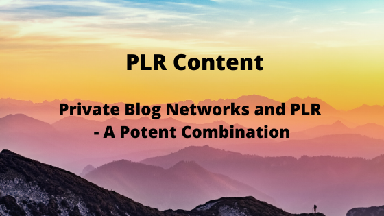 Private Blog Networks and PLR – A Potent Combination