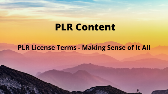 PLR License Terms – Making Sense of It All